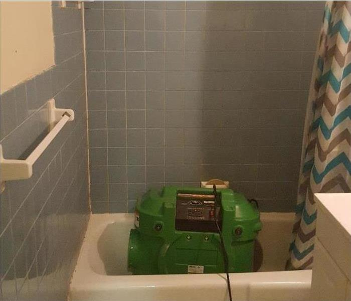 Mold Remediation Mold in Bathroom
