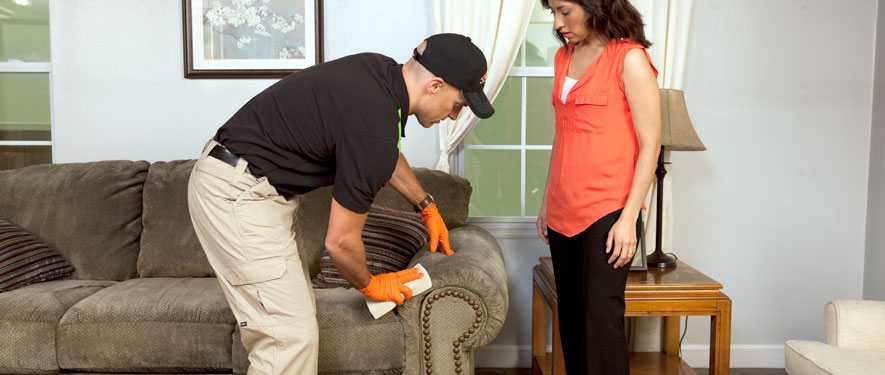 Manhattan, NY carpet upholstery cleaning